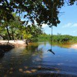 PRAIA RIO DO PEIXE -BAHIA - BRAZIL